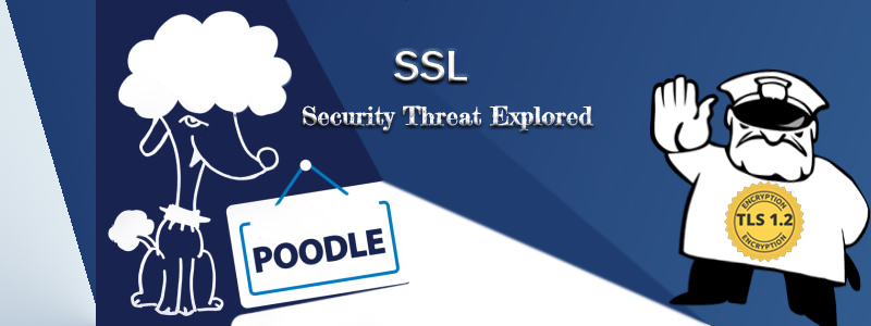Poodle – SSL Security Threat Explored