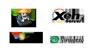 logo_virtualization_platform
